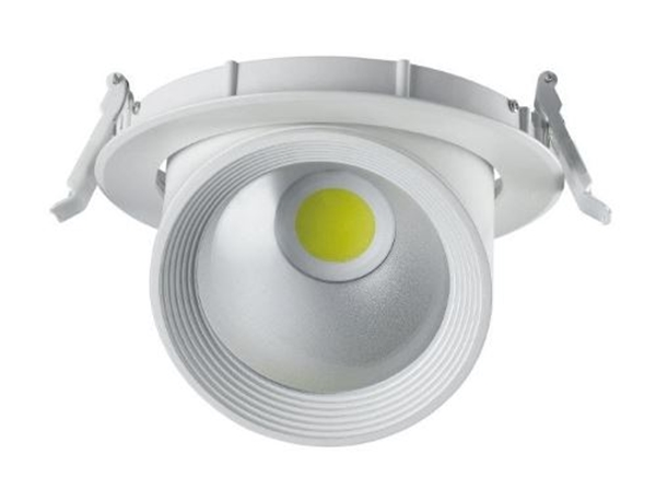 Picture for category Adjustable LED Ceiling Light